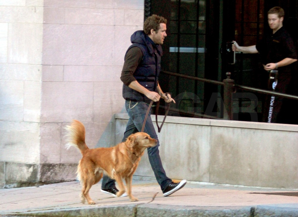Ryan returned to his Boston hotel after a walk with his four-legged friend.