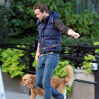 Ryan Reynolds Takes Baxter on a Walk in Boston Pictures