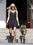 Kate Bosworth helped her dog down the steps.