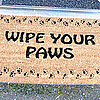Should I Wipe My Dogs' Paws