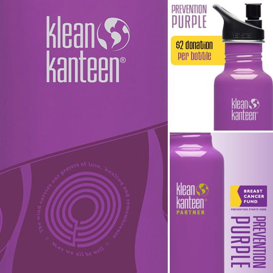 Kleen Kanteen Prevention Purple Prayer Flag Water Bottle