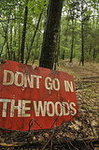 Don&#039;t Go in the Woods
