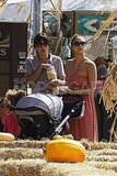 Jessica Alba pushed Haven Warren around a pumpkin patch.