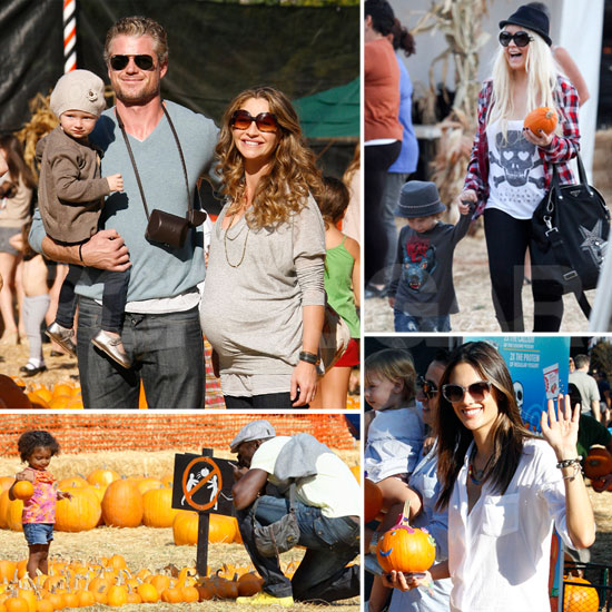 Stars and Their Families Get Festive at the Pumpkin Patch — Christina, Heidi, Alessandra and More!