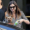 Miranda Kerr in NYC With Her Dog Frankie Pictures
