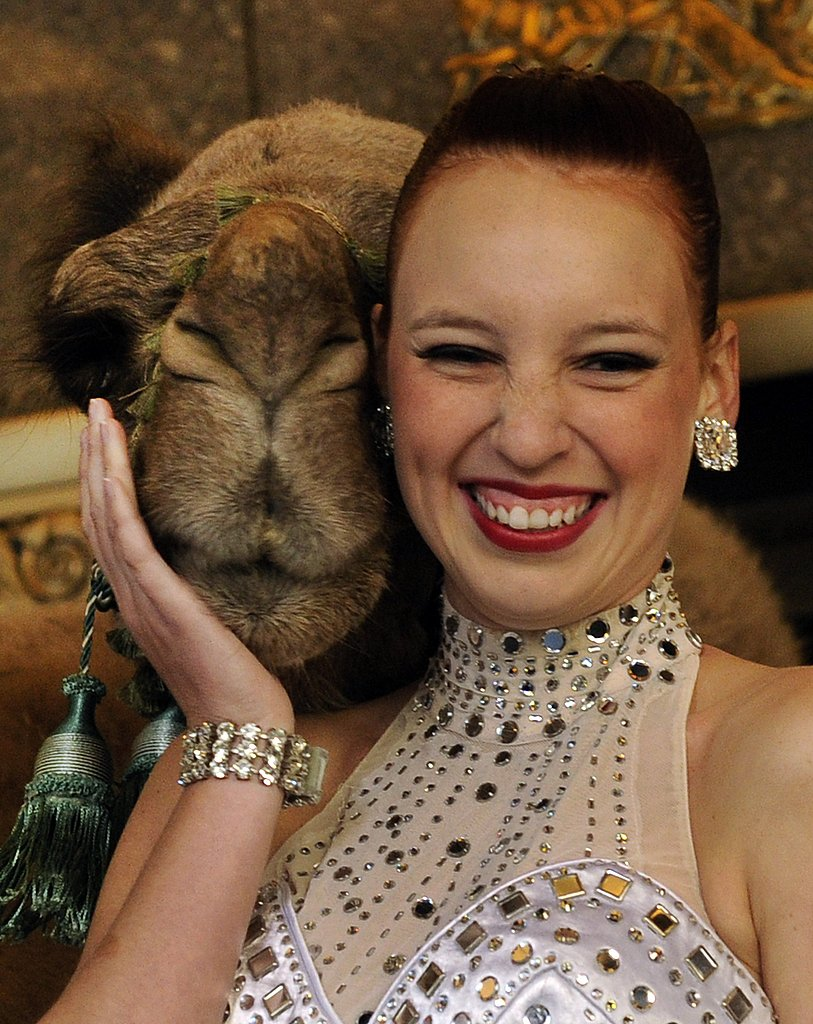 A camel snuggles with a Rockette.