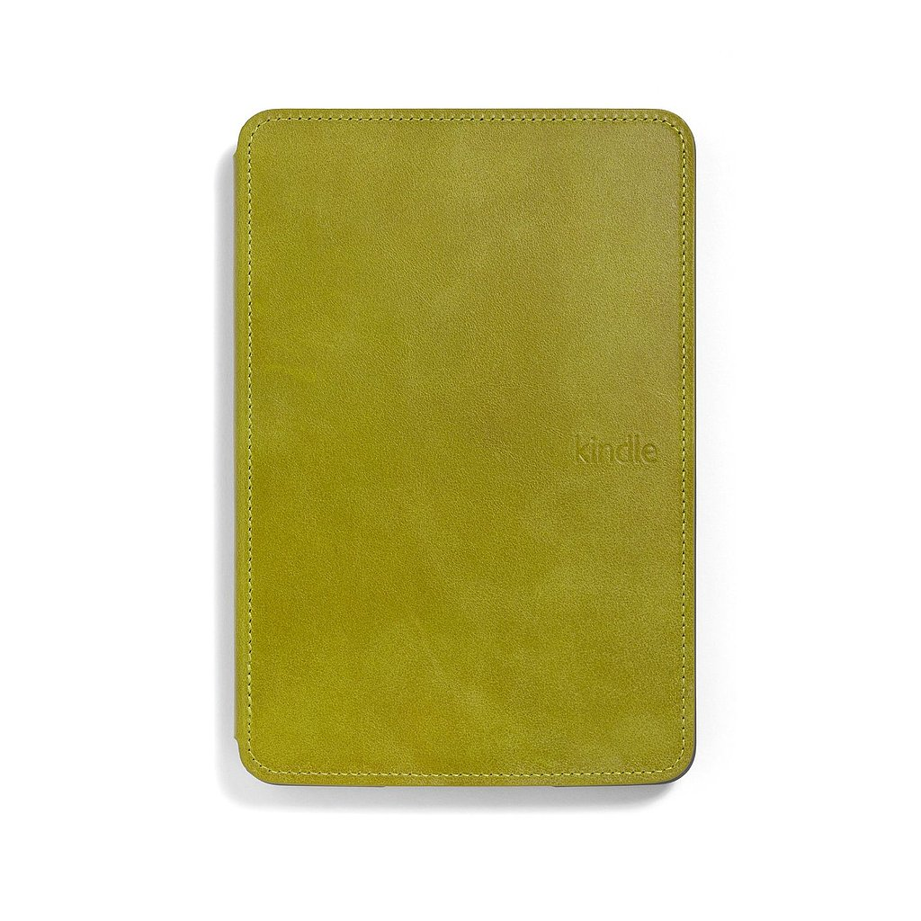 Kindle Touch Lighted Cover ($60)