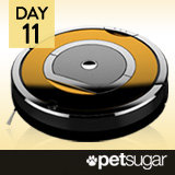 15 Days of Holiday Giveaways, Day 11: Win iRobot Roombas!