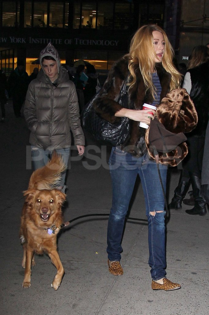Blake Lively and Ryan Reynolds's dog, Baxter, accompanied one another on a stroll around NYC.