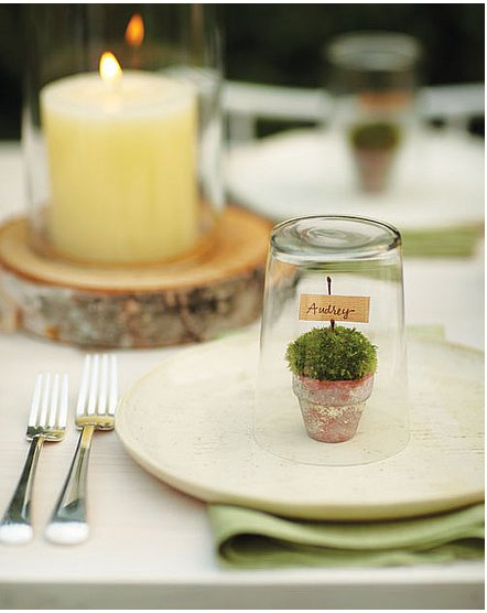 Create a charming tablescape with mini terrarium placecards on each plate.  Source: Martha Stewart