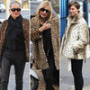 Kate Moss Style includes Leopard, Leather and Fur