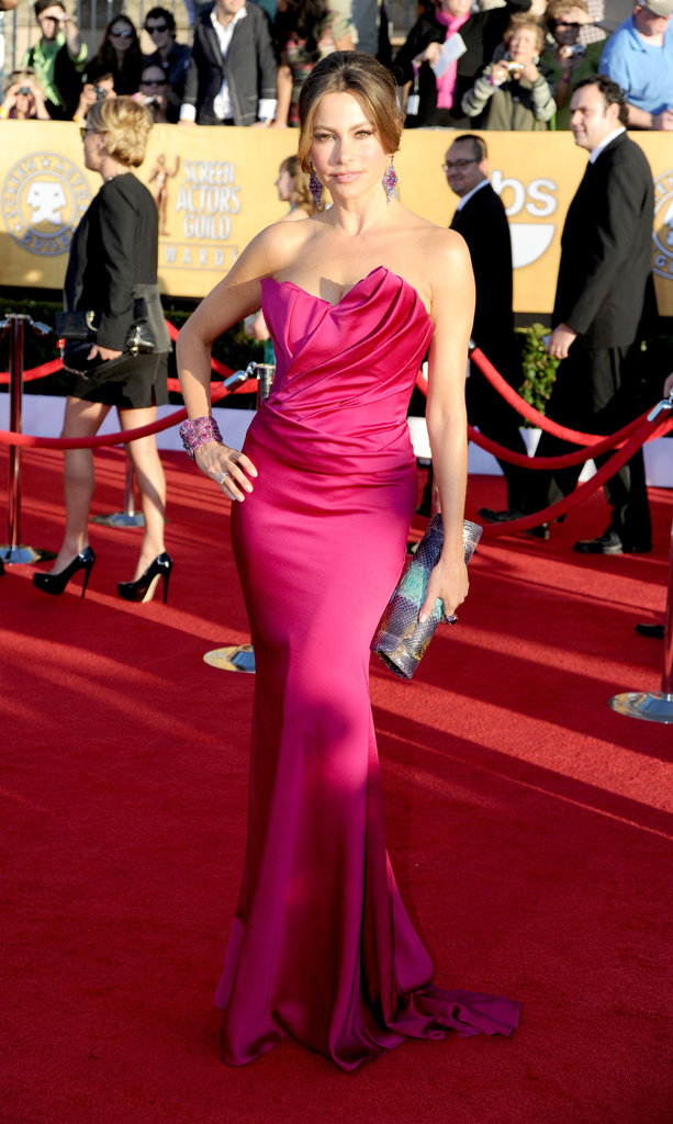 Sofia Vergara showed off her sexy silhouette in a strapless fuchsia Marchesa fishtail gown at this year's SAG Awards.