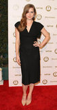 Amy Adams wore all black to a bash in LA.