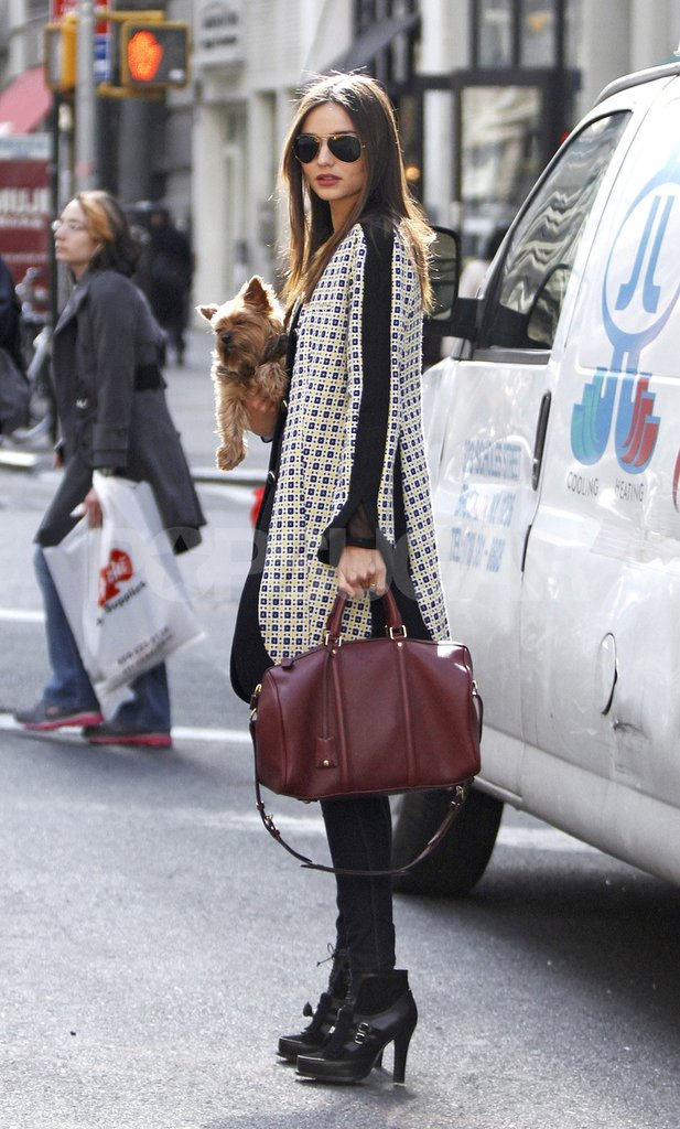 Loving Miranda Kerr's bag and cute doggie? Zoom in to check them out super up close!