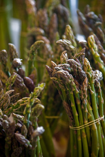 France: Asparagus