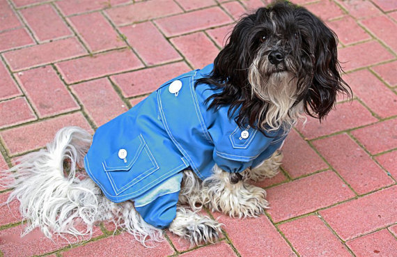 Tootlewear's rain suit ($67) comes with a coat, pants, and snood to cover your dog from head to paws. We love the Springtime blue hue and the cute pocket and button detail.
