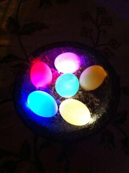 LED Easter Eggs