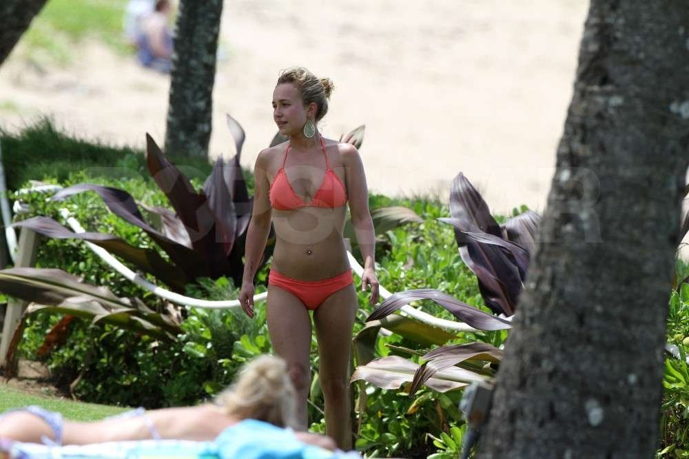 Hayden Panettiere vacationed in Hawaii and got some sun in a tiny bikini.