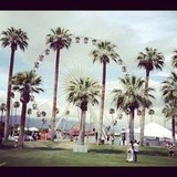 Hello, Coachella!