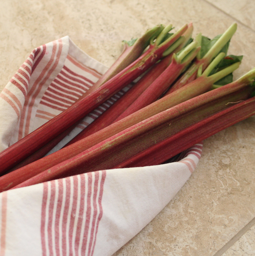 The Spring Fruit: Rhubarb