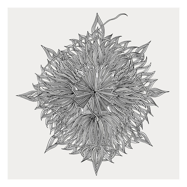 Karen Berdou's Supernova ($4) illustration is a more organic interpretation of geometric patterning.
