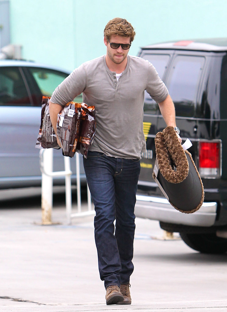Liam Hemsworth picked up dog food in LA.