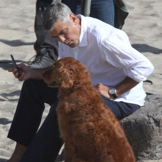 George Clooney Photo Shoot Pictures With a Dog