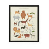 Rifle Paper Co. Animal Alphabet ($89)