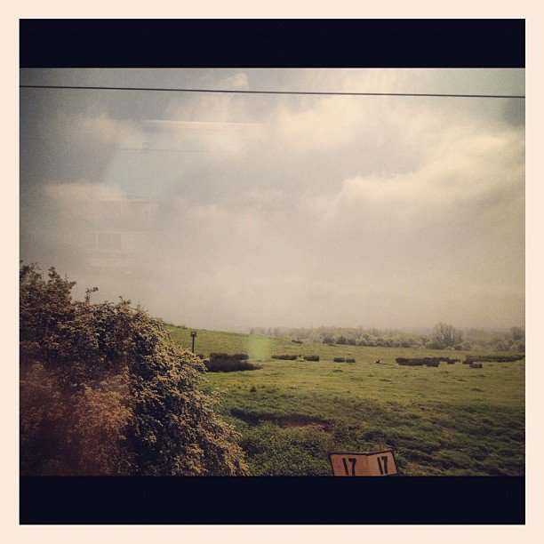 A glimpse of the green and gray English countryside.