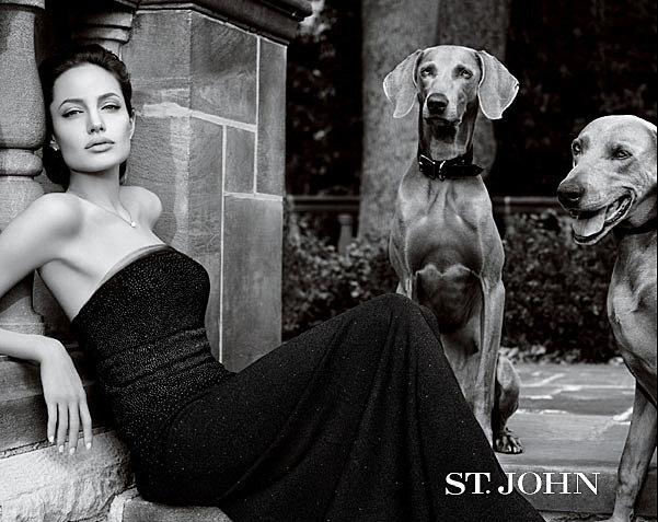 Angelina Jolie posed with a pair of dogs for one of her St. John ad campaigns.