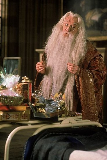 Dumbledore — Harry Potter Series