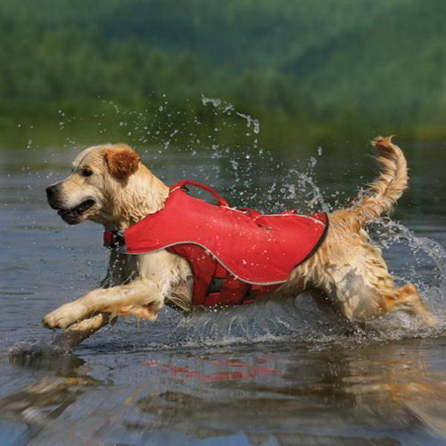 Kurgo Surf n Turf Dog Life Jacket