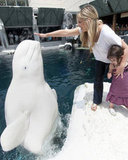 Sarah Michelle Gellar and Charlotte Make New Friends at SeaWorld