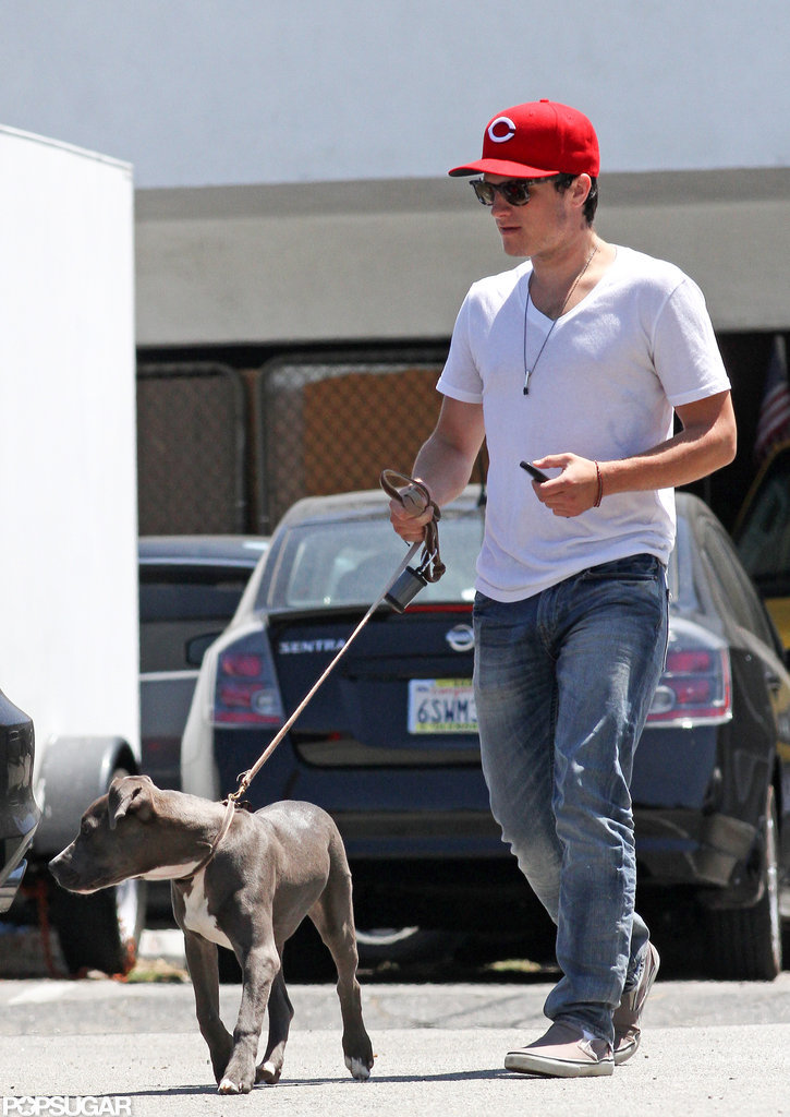 Josh Hutcherson adopted his pit bull, Driver, in early 2012 and took him for an LA walk that July.