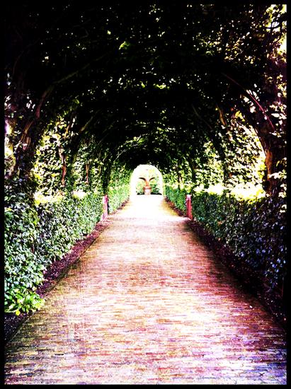 Castle garden Amsterdam
