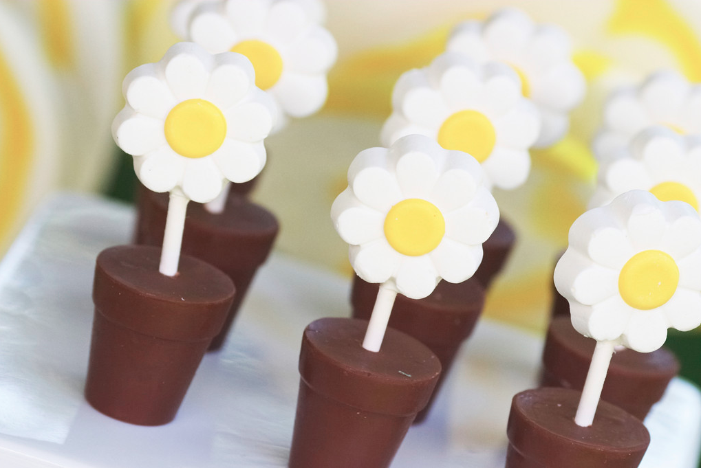 These daisy chocolate cups (created by the übertalented Peter Callahan) are a fun dessert to display! Source: Donna Newman Photography