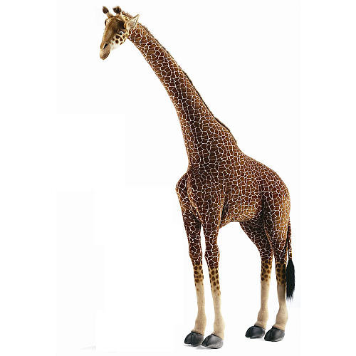 Extra-Large Giraffe ($850)