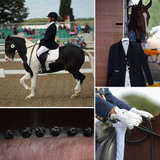 Sleek Steeds Flash Their Dressage Fashion in the UK