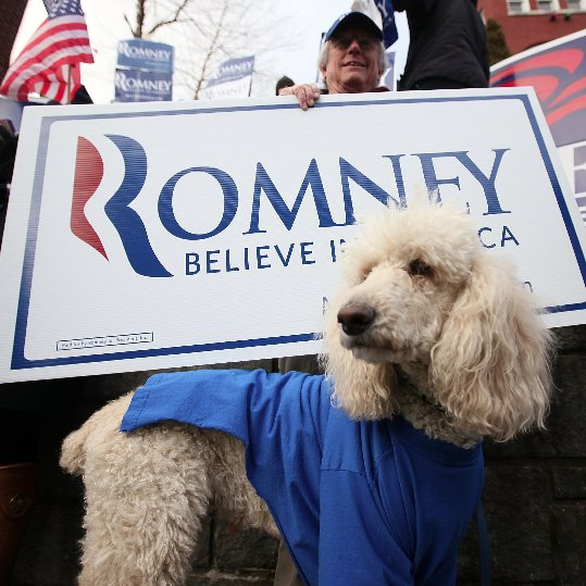 Barack Obama and Mitt Romney Election Pet Gear