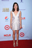 Aubrey Plaza attended the 2012 ALMA Awards.