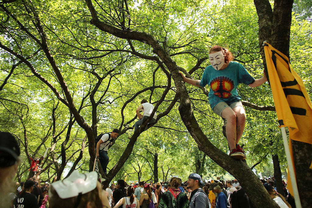 This woman took to the trees to protest in Chicago.