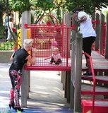 Pink played at a park with her family.