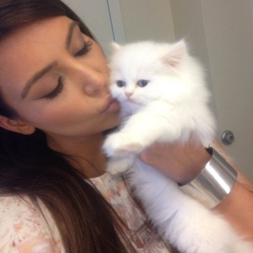 Kim Kardashian cuddled with her new cat, Mercy. Source: Instagram user kimkardashian