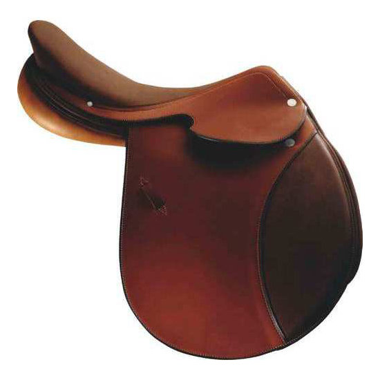 Hermès Brasilia Saddle ($6,750)