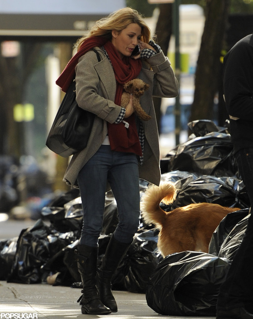 Blake Lively brought Penny and Baxter to the set of Gossip Girl.