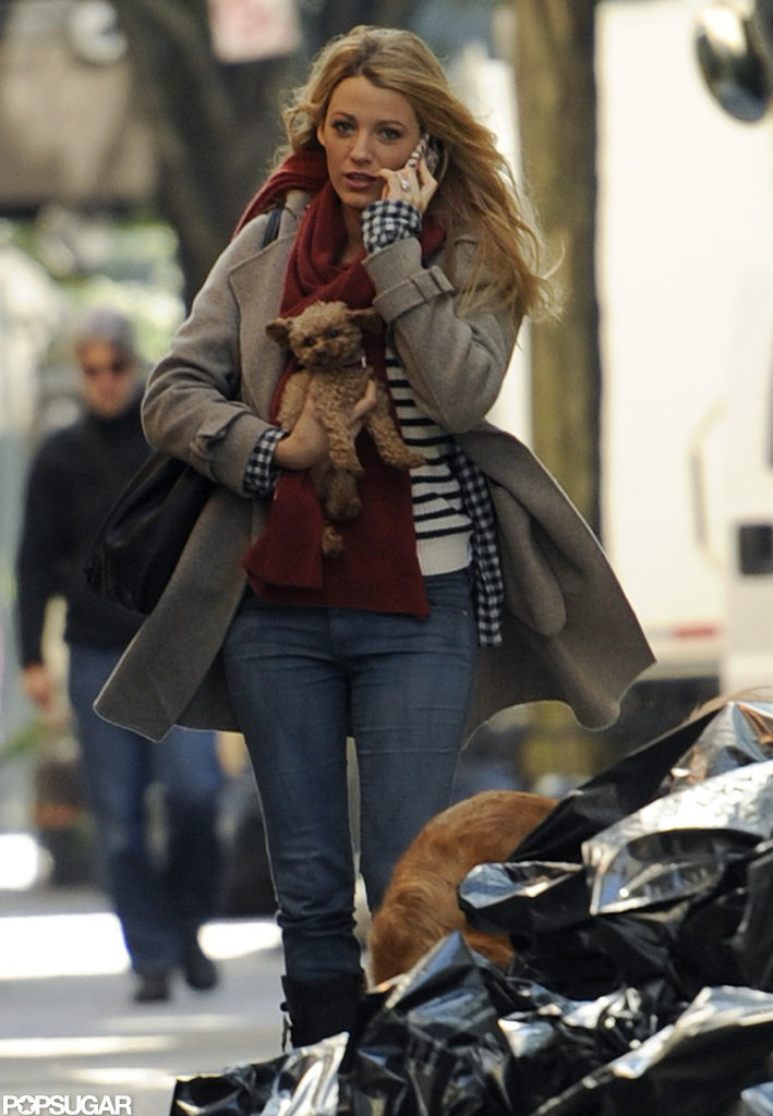 Blake Lively carried her dog Penny.