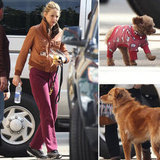 Blake Brings Her Dressed-Up Pup to Work