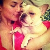 Chrissy Teigen snuggled up with her pup. Source: Instagram user chrissy_teigen