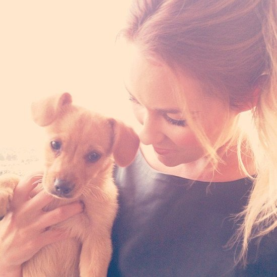 Lauren Conrad Supports Adopt a Shelter Dog Month With a New Puppy!