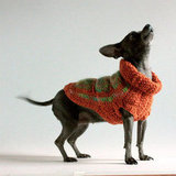 Granny Square Dog Sweater